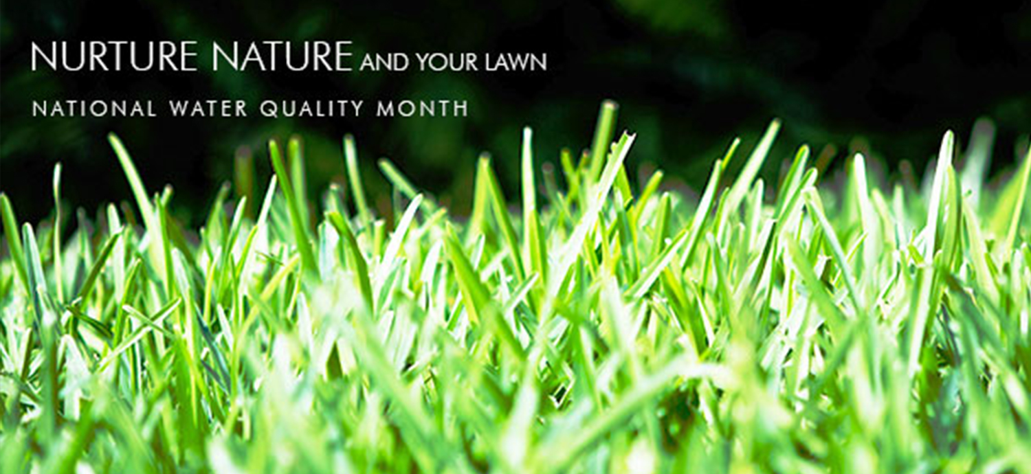 Nurture Nature and Your Lawn