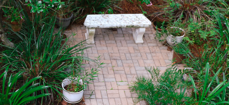 Bench in Florida-Friendly Landscape