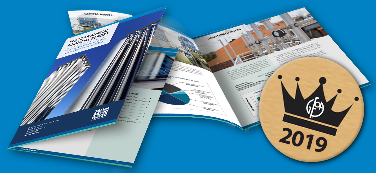 Composite of Popular Annual Financial Report and award medallian