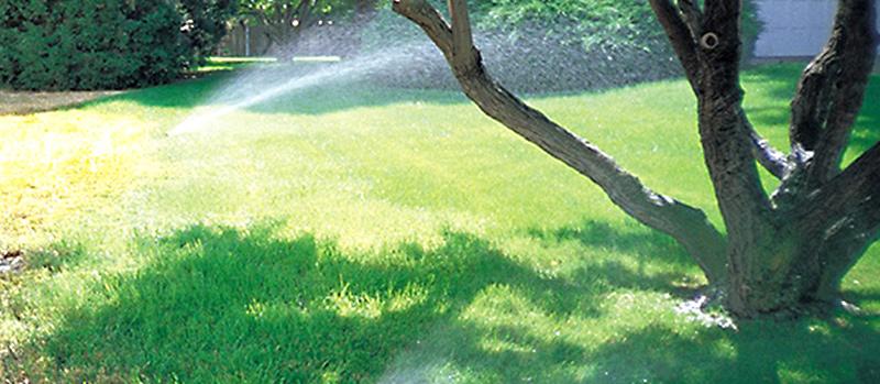 Sprinklers in yard